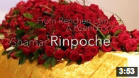 From Renchen Ulm: A Poem For Shamar Rinpoche