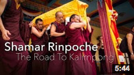 Shamar Rinpoche: The Road To Kalimpong