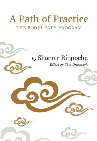 A Path of Practice: The Bodhi Path Program